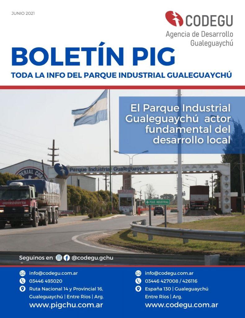 2021 tapa boletín PIG